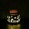 Candle Choice Mason Jar Light Indoor Outdoor Waterproof Lantern. 2 AA Battery Operated Jar Light with Remote and Timer. Butterfly and Flowers Design